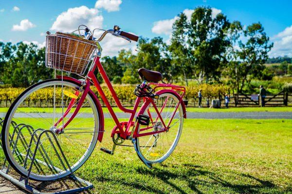 basket-bicycle-bike-805303-600x400.jpg